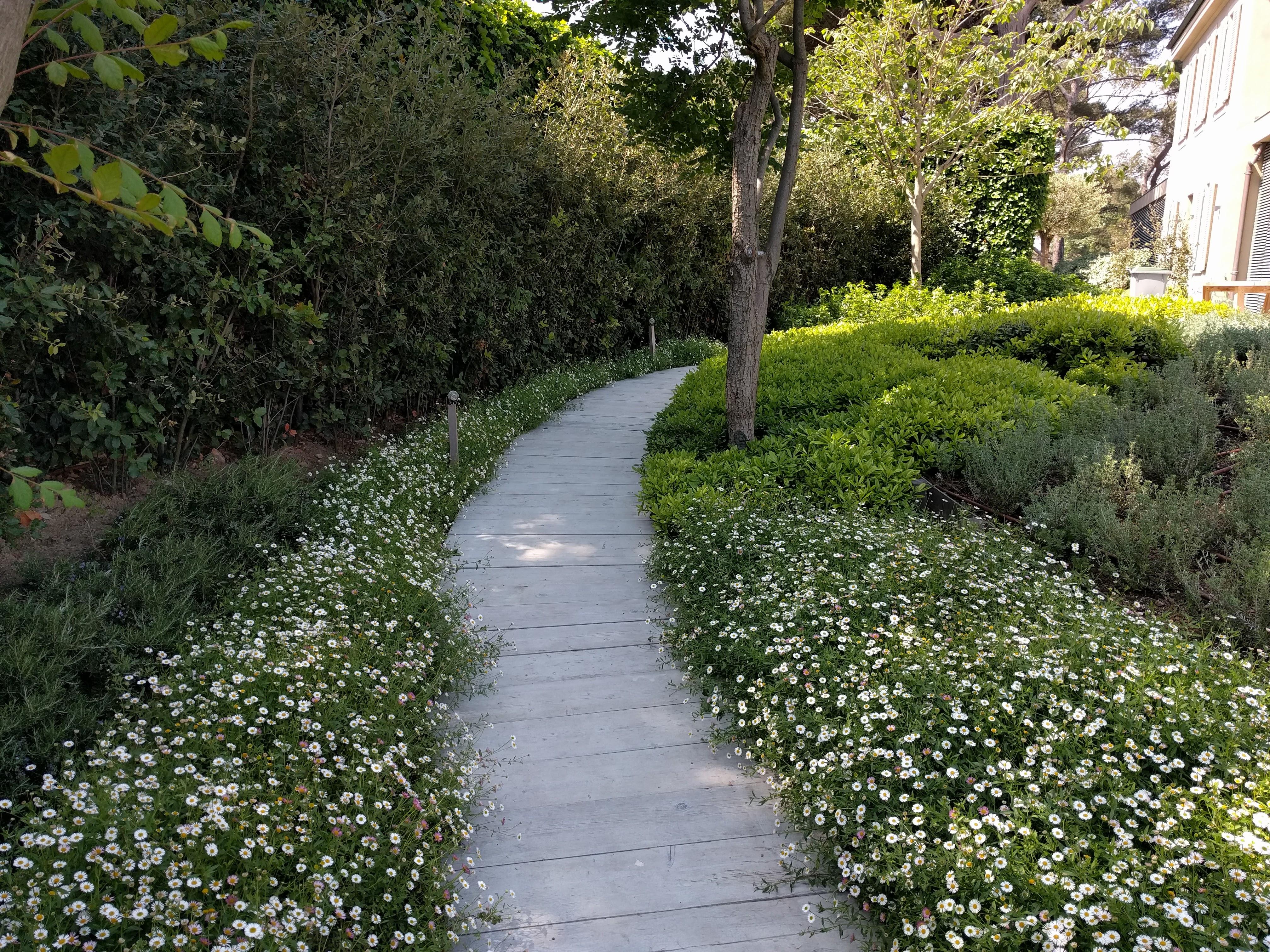 Project Star Garden