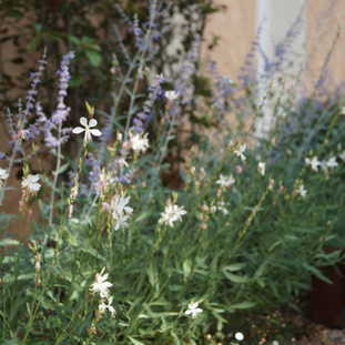 Aanleg tuin, Chateaudouble