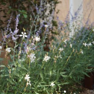 Aménagement Jardin, Chateaudouble