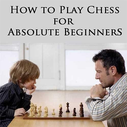 Beginner's Level 1- Pawn