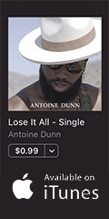 Lose It All by Antoine Dunn.jpg
