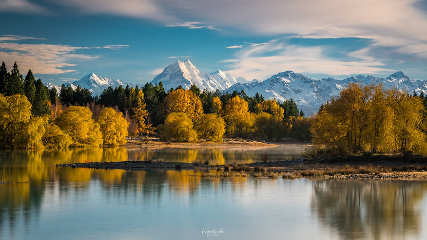 Autumn trees on Lake Pukaki with Mt Cook in the background. New Zealand photography by Laurie Winter.