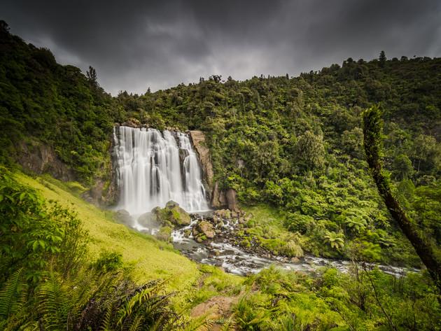 Marokopa Waterfall Tarawau Forest