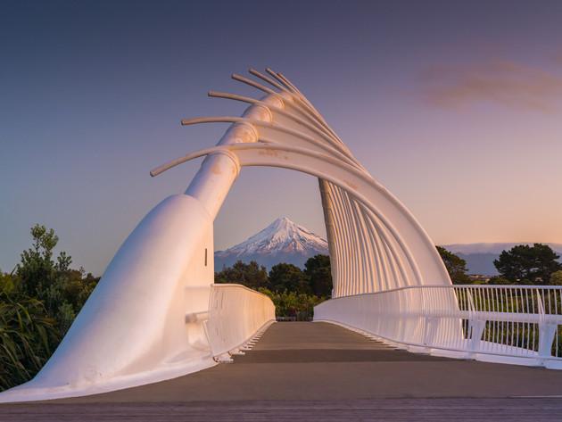 Whale Bone Bridge New Plymouth