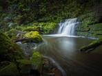 McLean Falls Lower Waterfall in the Catlins