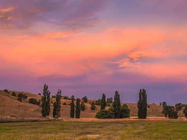 Hawkes Bay Sunset