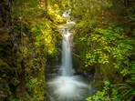 Crichton Loop Track Waterfall