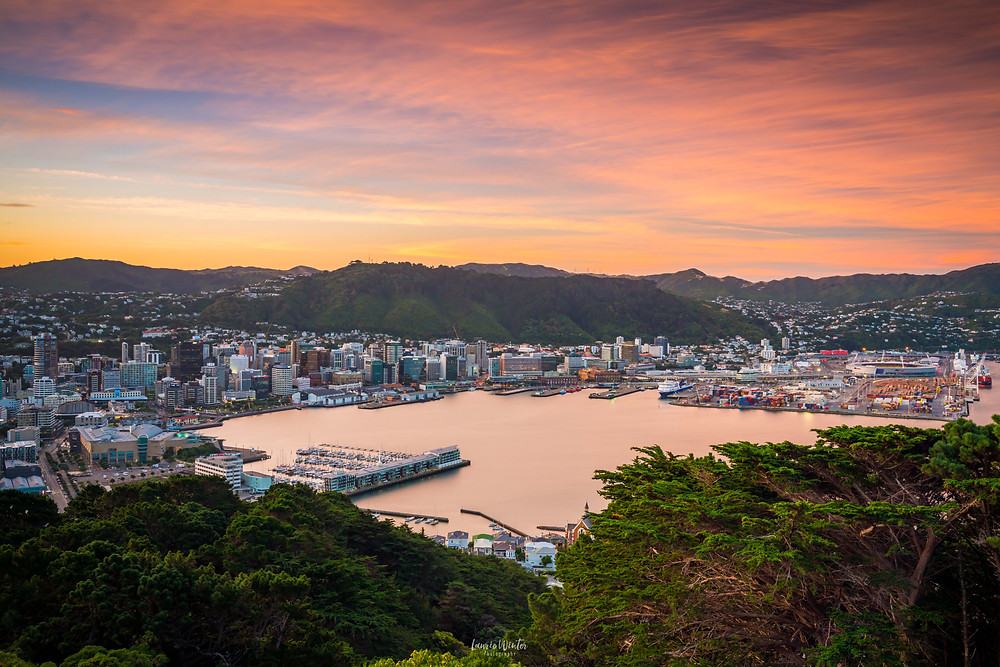 Views of Wellington City from Mt Victoria at sunset