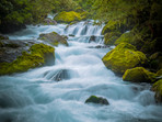 Marian Creek Fiordland