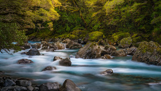 Hollyford River, Fiordland