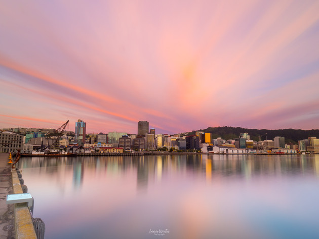 Wellington City Harbour Sunrise