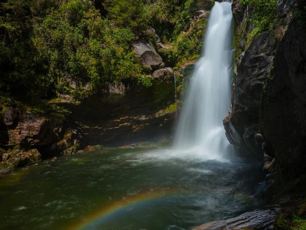 Wainui Falls Nelson Waterfall