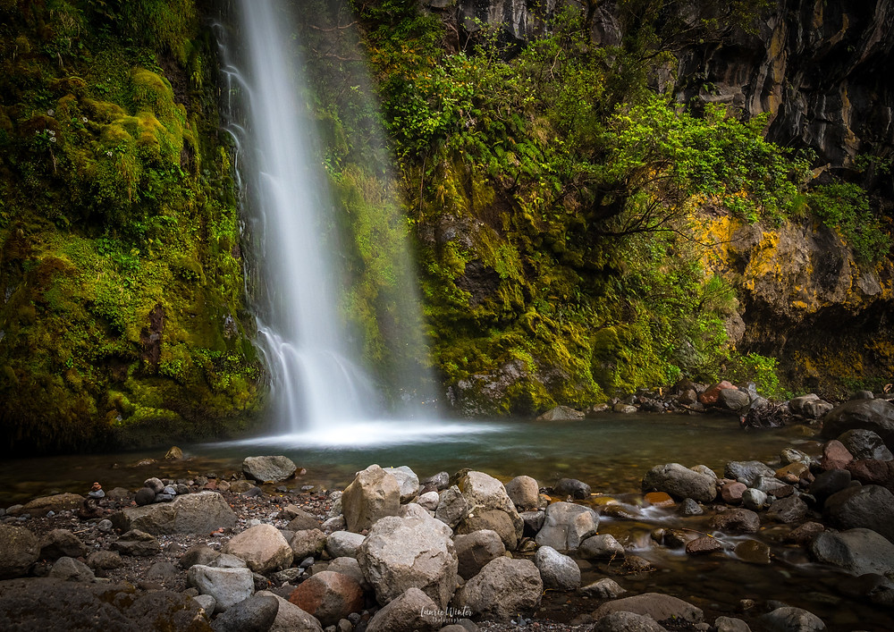 Dawson Falls Taranaki close up