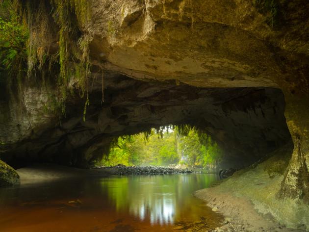 Limestone Arch Oparara Basin