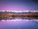 Purple Twizel Sunrise