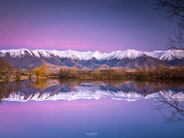 Purple Twizel Sunrise