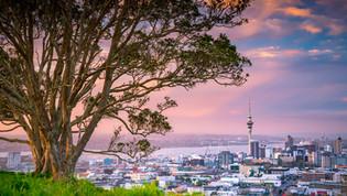 Auckland & Far North