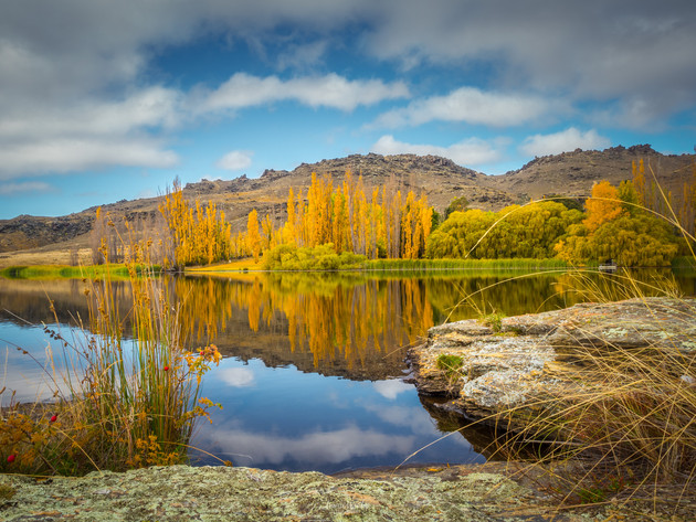 Autumn at Butchers Dam Alexandra