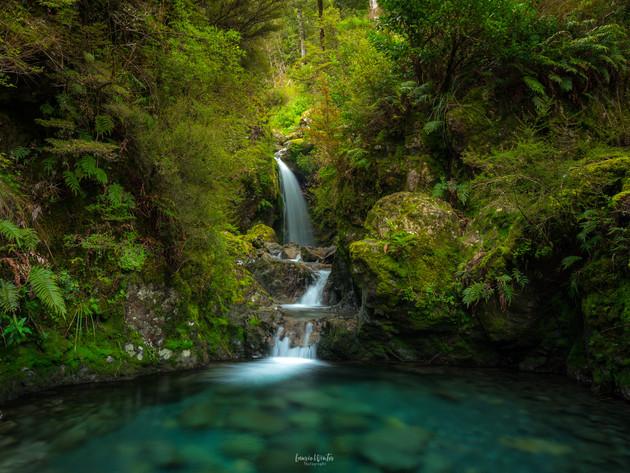 Avalanche Creek Waterfall Arthurs Pass