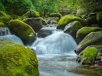 Waikato Waterfall Wairere Falls