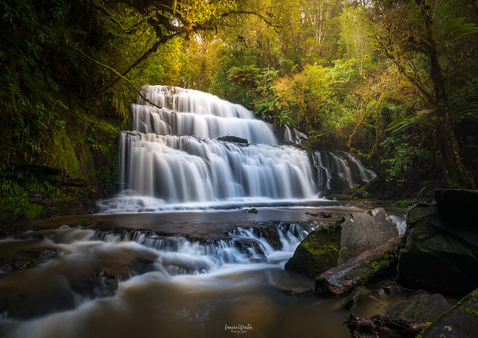 Purakaunui Falls is a beautiful cascade waterfall in the Catlins area of NZ. New Zealand photography by Laurie Winter.