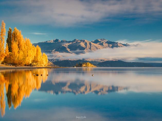 Beautiful Golden Autumn Colours at Lake Wanaka