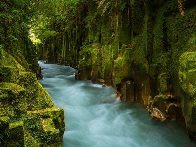 Te Whaiti-Nui-A-Toi Canyon Te Urewera