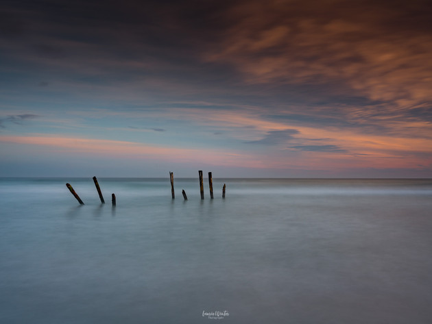 St Clair Beach Poles Dunedin