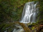 Catlins Waterfall Matai Falls