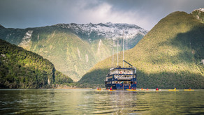 A Bucket List Trip to Doubtful Sound with Real Journeys