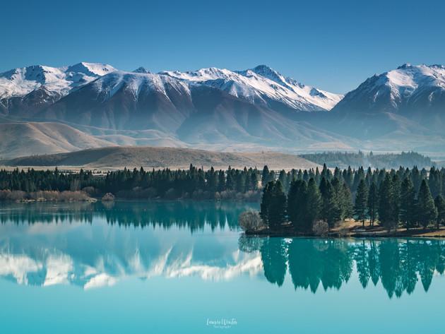 Lake Ruataniwha Trees and Ohau Range