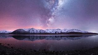 Lake Heron Stars