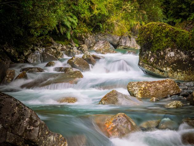 Fiordland River Scene