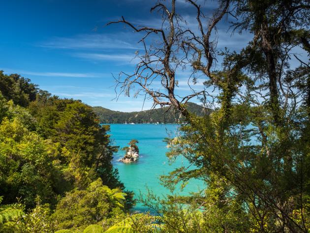 Great Walk Abel Tasman Coast Track