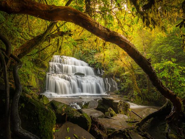 Catlins Waterfall Purakaunui Falls