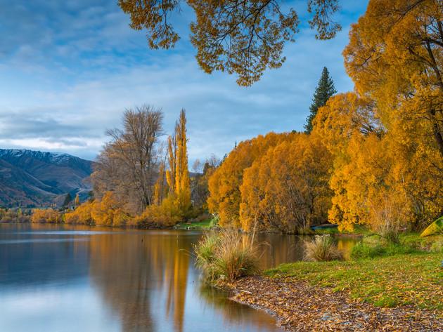 Lake Hayes Autumn Colours