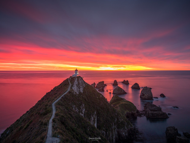 Gorgeous Sunrise at Nugget Point Lighthouse