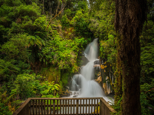 Waiatiu Falls Whirinaki Forest Park
