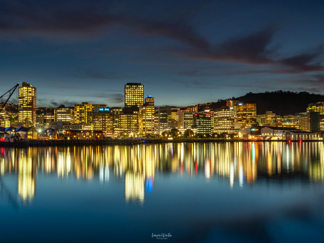 Wellington City Skyline at Night
