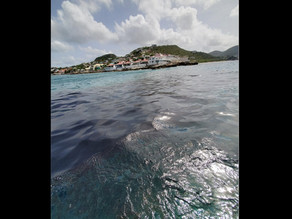 Sint Maarten: Preliminary criminal probe launched into oil spill