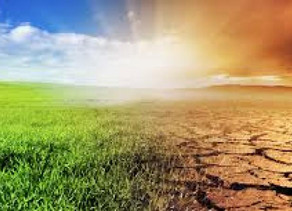 Caribbean climate experts warn of dire effects of climate change