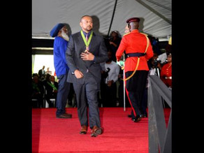 'Give producers some light too' - Sean Paul among five entertainers honoured on Heroes Day