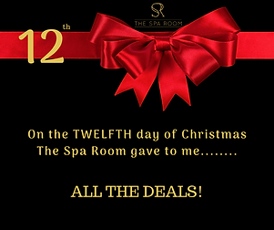 _12 Days of Christmas Deals Official (2)
