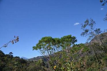 guatemala_01.jpg