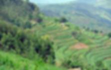 rwanda2.png