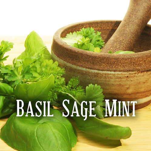 Basil Sage Mint Jar Candle