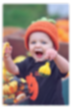 Pumpkins Inset 2.png