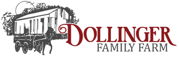 Dollinger Logo Maroon Long.png