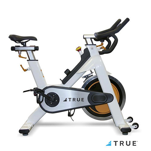 Indoor Cycling Bike (True Fitness)