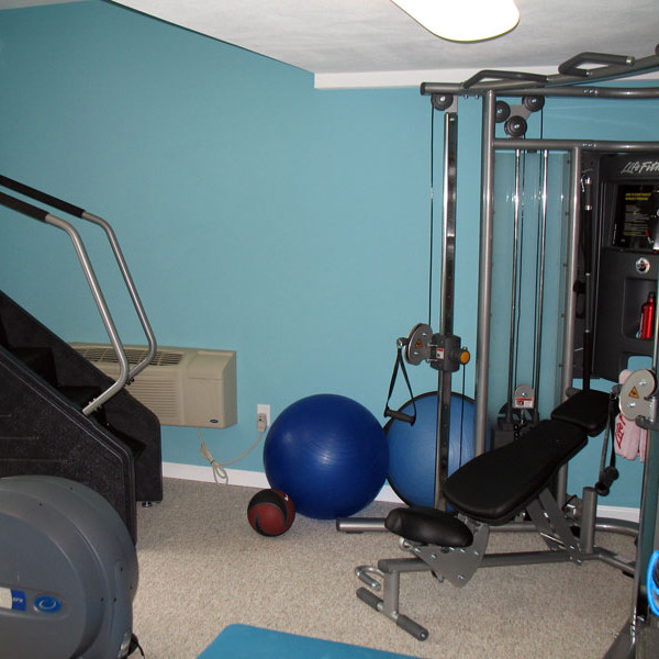 Home Fitness Room with a View